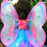 fairy wings 06.jpg
