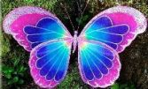 fairy wings 181.jpg
