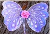 wings-fairy_01.jpg